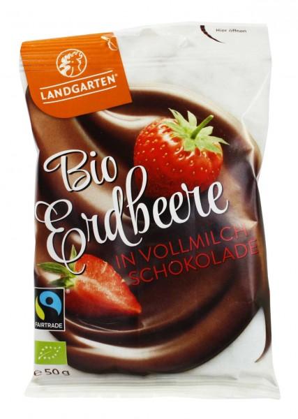 Bio Erdbeere in Vollmilch-Schokolade (50g)