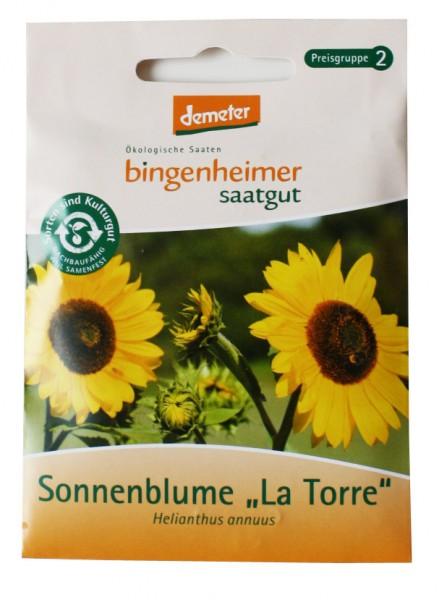 """Sonnenblume """"La Torre"""" Bio-Saatgut"""