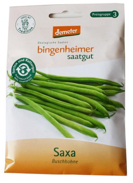 Saxa Buschbohne