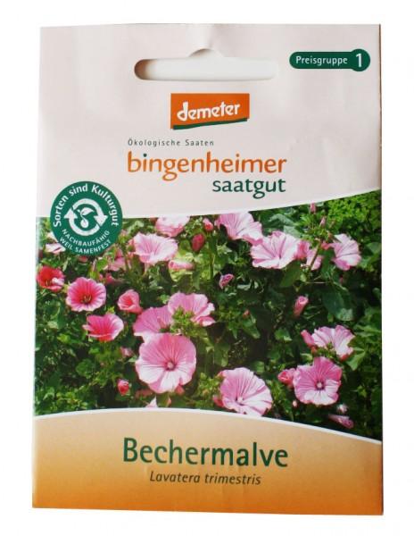 Bechermalve (Bio-Saatgut)