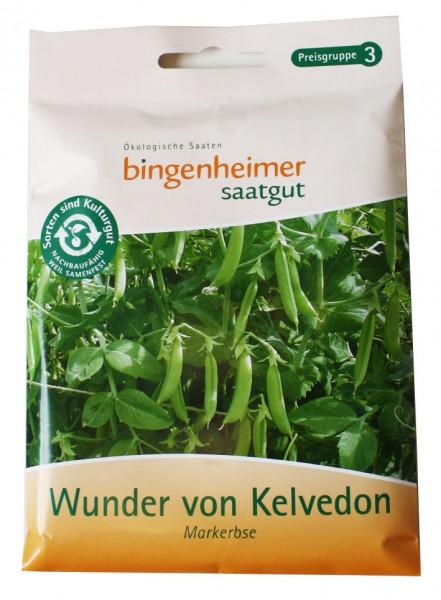 Wunder von Kelvedon Markerbse (Bio-Saatgut)