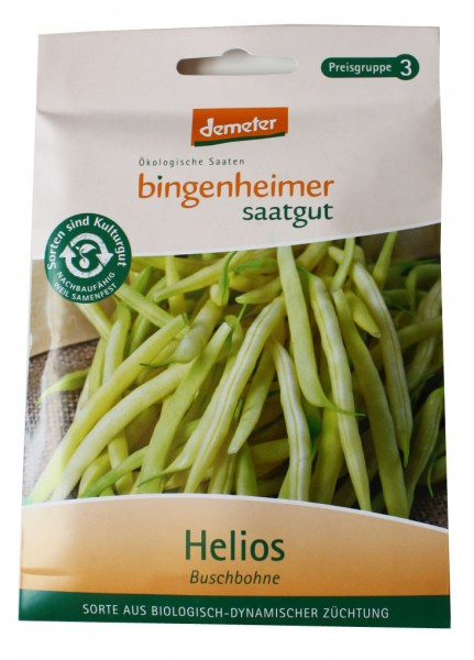 Helios Buschbohne (Bio-Saatgut)