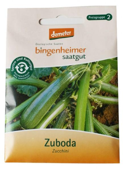 Zuboda Zucchini (Bio-Saatgut)