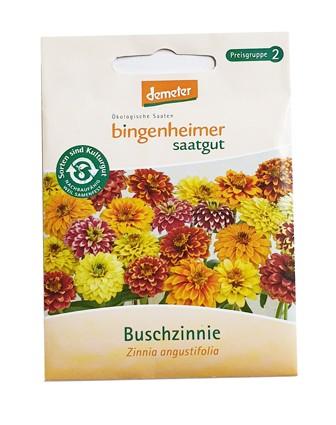 Buschzinnie (Bio-Saatgut)